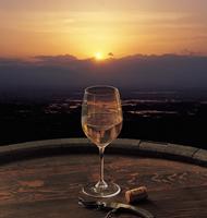 ワイナリーと酒蔵巡りのイメージ